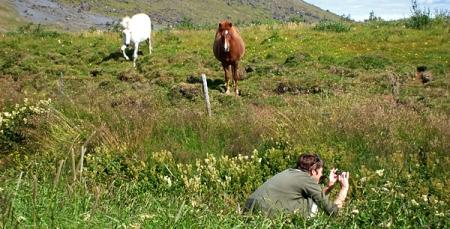 Jou versucht sich als Pferdeflüstererin